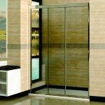 Душевая дверь RGW регулируемая PA-02 (970-1100)х1850 стекло прозрачное